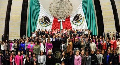 Violencia Política por Razón de Género, Reformas Pendientes en México